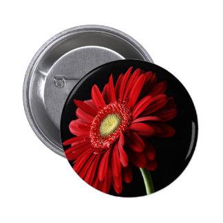 Pin rojo de la margarita de Gerber Pin Redondo 5 Cm