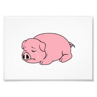 Pin rosado gritador de la almohada de la taza de cojinete