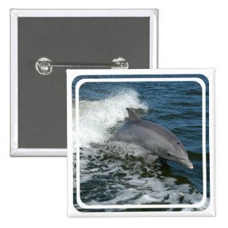 Pin salvaje del cuadrado del delfín