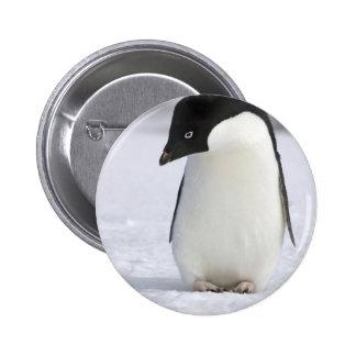 Pin solo del pingüino pin redondo 5 cm