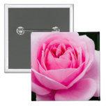 Pin subió del rosa en colores pastel