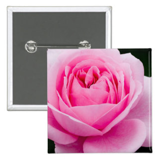 Pin subió del rosa en colores pastel pin cuadrada 5 cm