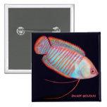 Pin tropical de los pescados del Osphromemus goram Pin Cuadrada 5 Cm