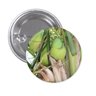 Pin verde de los cocos