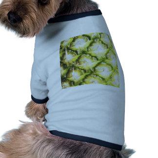 Piña descolorada ropa perro