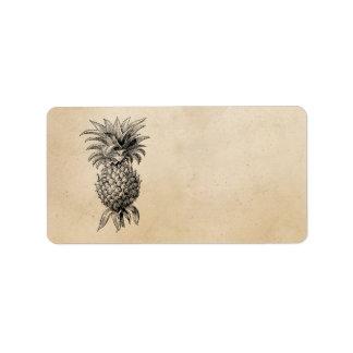 Piñas del ejemplo de la piña de los 1800s del vint etiquetas de dirección