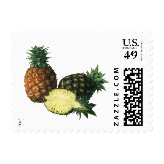 Piñas hawaianas del vintage, fruta del alimento sello postal