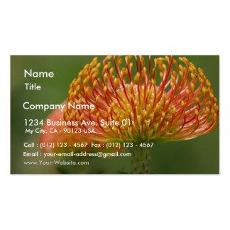 Pincushion Protea Business Card Template