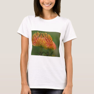 pincushion-protea T-Shirt
