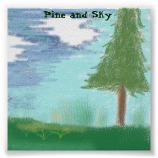Pine and Sky Poster