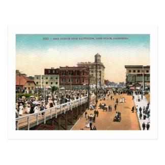Pine Ave., Long Beach, California c1910 Vintage Postcard
