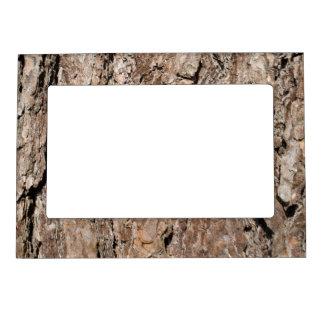 Pine bark background magnetic frames