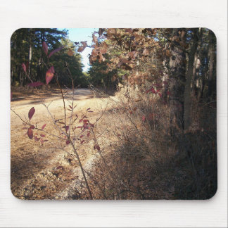 Pine Barrens Autumn Mouse Pad