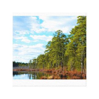 Pine Barrens Crisp Clear Day Canvas Print
