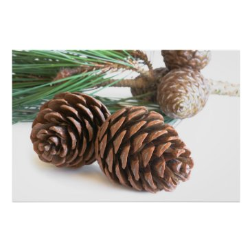 Art Themed Pine branch and cones poster