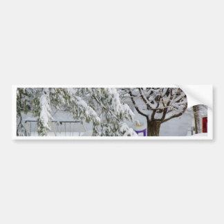 Pine branch tree under snow bumper stickers