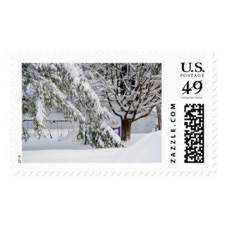 Pine branch tree under snow stamps
