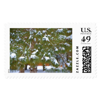 Pine branch under snow postage stamps