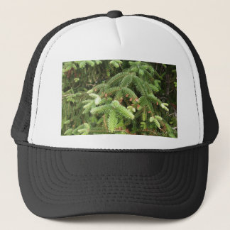 Pine Branches Trucker Hat