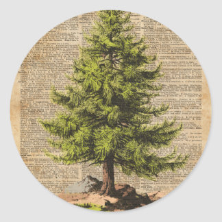 Pine,Cedar Tree,Christmas Tree Dictionary Art, Classic Round Sticker