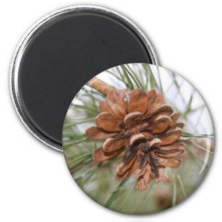 Pine Cone 2 Inch Round Magnet