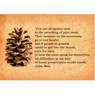 Pine Cone And John Muir Quote Statuette