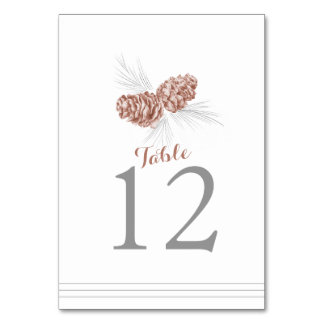 Pine cone art wedding or occassion table number table cards