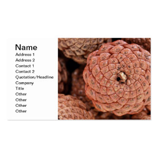 Pine Cone Business Card Templates