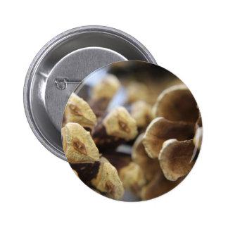 pine cone button