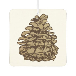 Pine Cone from a Ponderosa Air Freshener