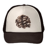 Pine Cone Hat