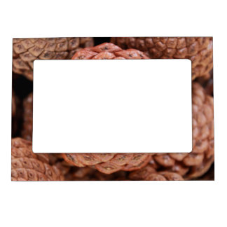 Pine Cone Picture Frame Magnet