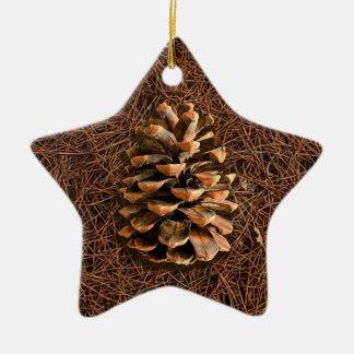 Pine Cone On Fallen Needles Ceramic Ornament
