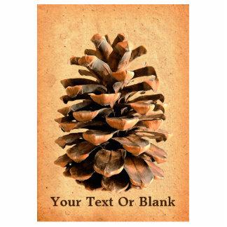 Pine Cone On Parchment Cutout