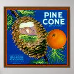 Pine Cone Oranges Poster