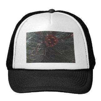 Pine Cone - photograph Trucker Hat