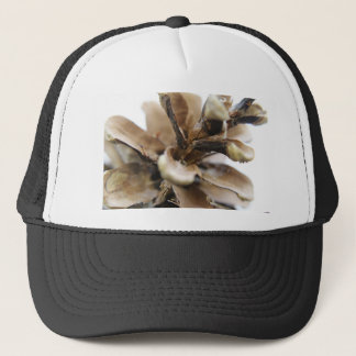 Pine cone photograph trucker hat