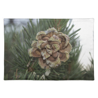pine cone placemat