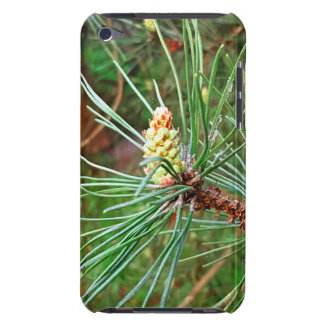 Pine cone tree needles photograph iPod touch Case-Mate case