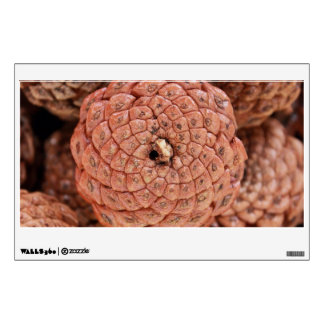 Pine Cone Room Stickers