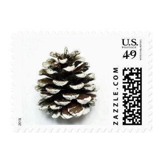 Pine cone winter stamp