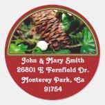 Pine Cone With Ivy Sticker