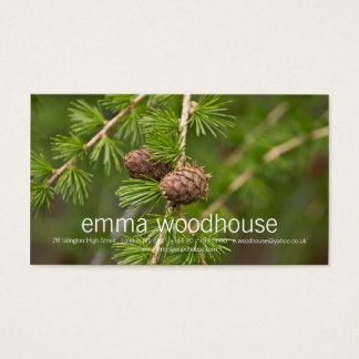 Pine Cones Business Card