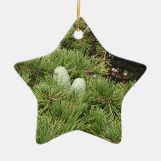 Pine Cones Ceramic Ornament