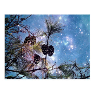 Pine cones in a tree under a starry night sky postcard