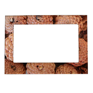 Pine Cones Magnetic Photo Frames