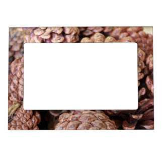 Pine Cones Magnetic Photo Frame