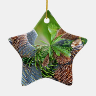 Pine Cones Double-Sided Star Ceramic Christmas Ornament
