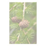 Pine Cones Personalized Stationery
