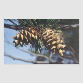 Pine Cones Rectangular Sticker